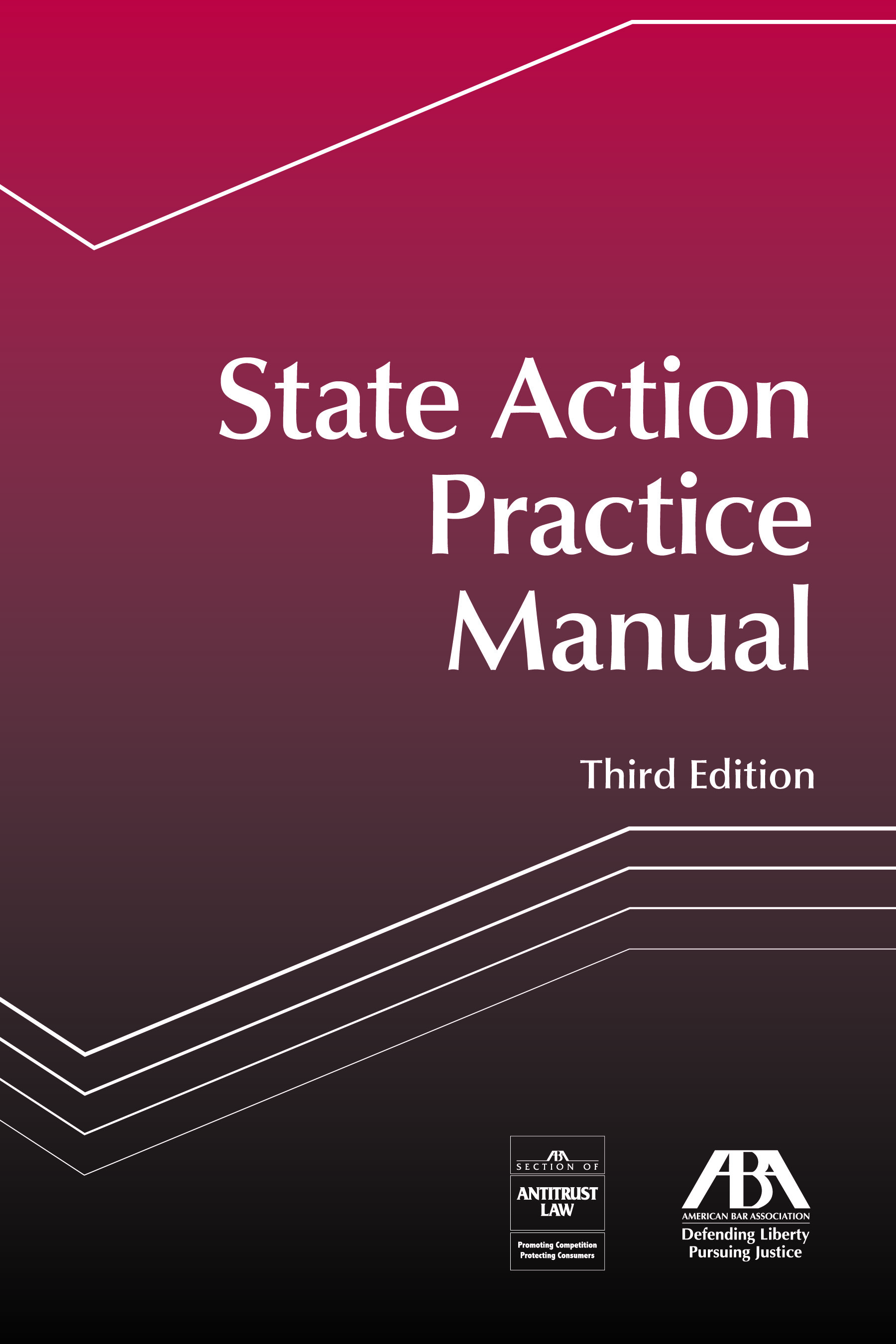 State Action Practice Manual, Third Edition