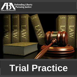 Developing and Presenting Powerful Demonstratives at Mediation, Arbitration, and Trial (Webinar, 7/27/17)